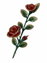BJ-1550DR Bronze red roses